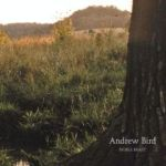 medium_andrew-bird-cover-240